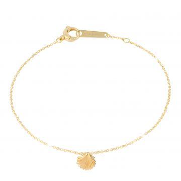 Shell - Luck Bracelet