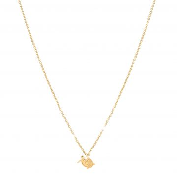 Turtle - Resilience Necklace